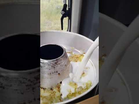 Gnocchi in Gorgonzolasoße mit Spinat aus dem OMNIA Backofen